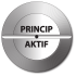principaktif